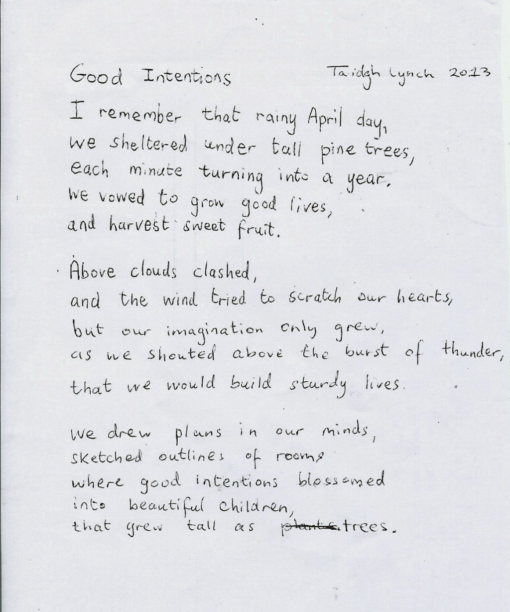 Enclosure: Poem by Taidgh Lynch